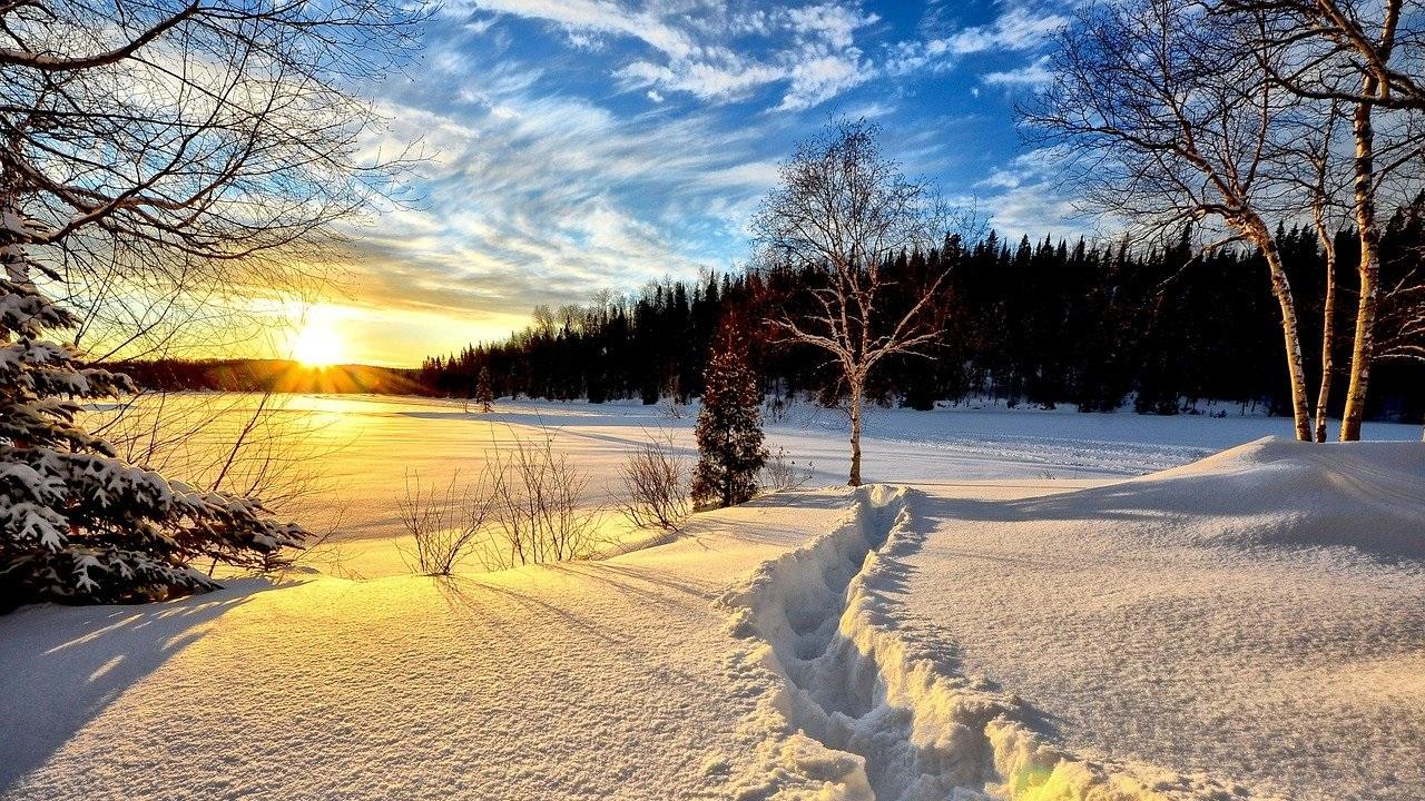 Приметы на 21 января. Что можно и нельзя делать в день Емельяна Зимнего