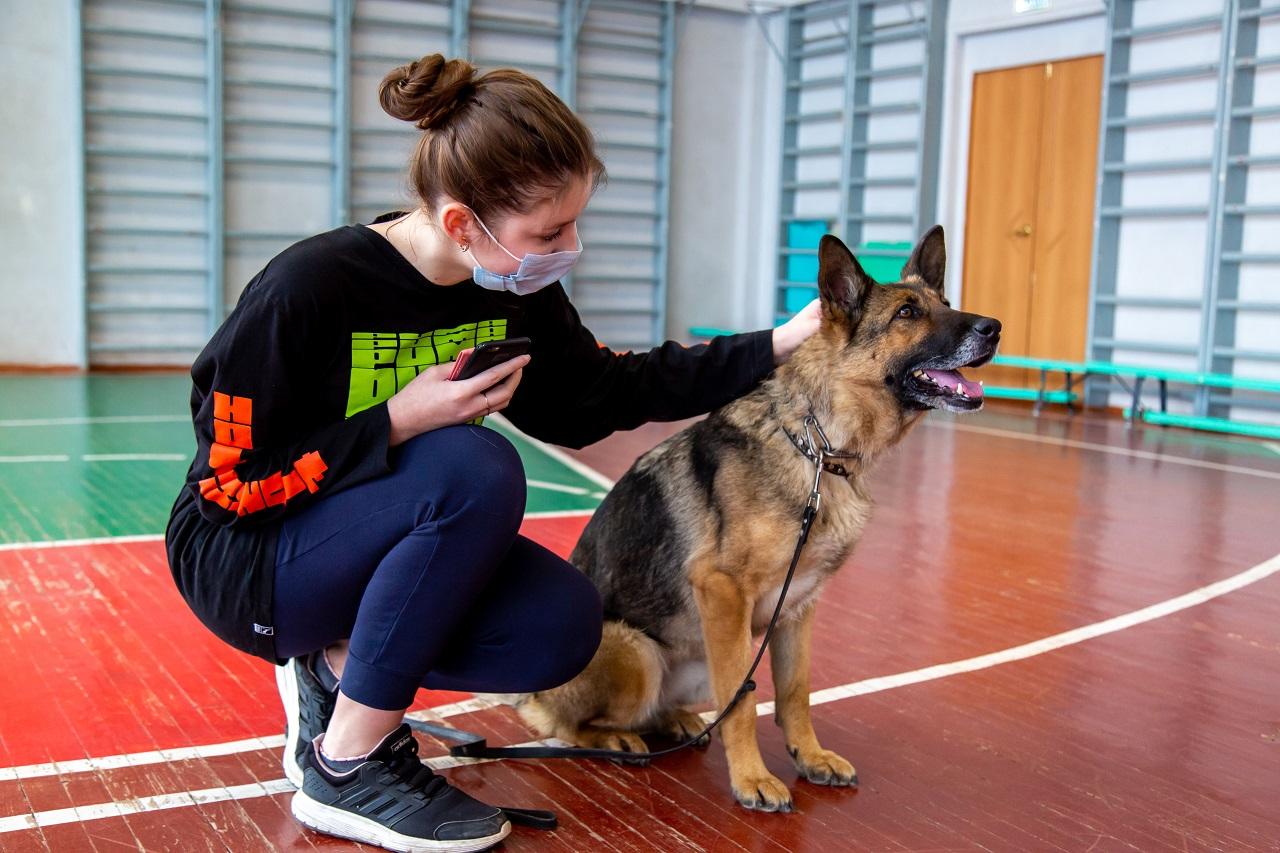 Опасность рядом: кинологи Челябинска рассказали, что должна уметь собака