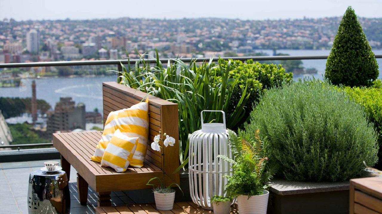 В Челябинске предложили разбить сады на крышах домов