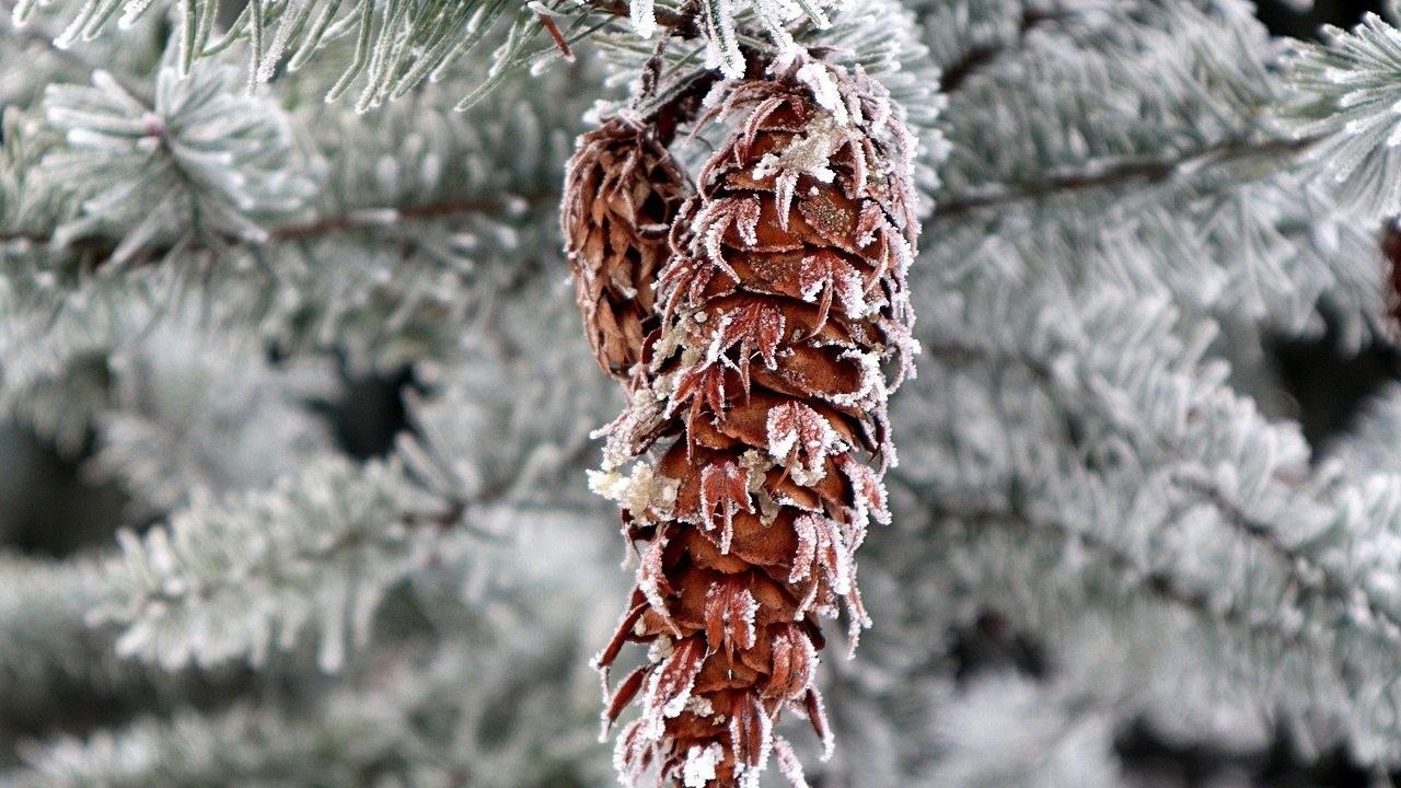 Погода в Челябинской области: синоптики предупреждают об аномальном холоде