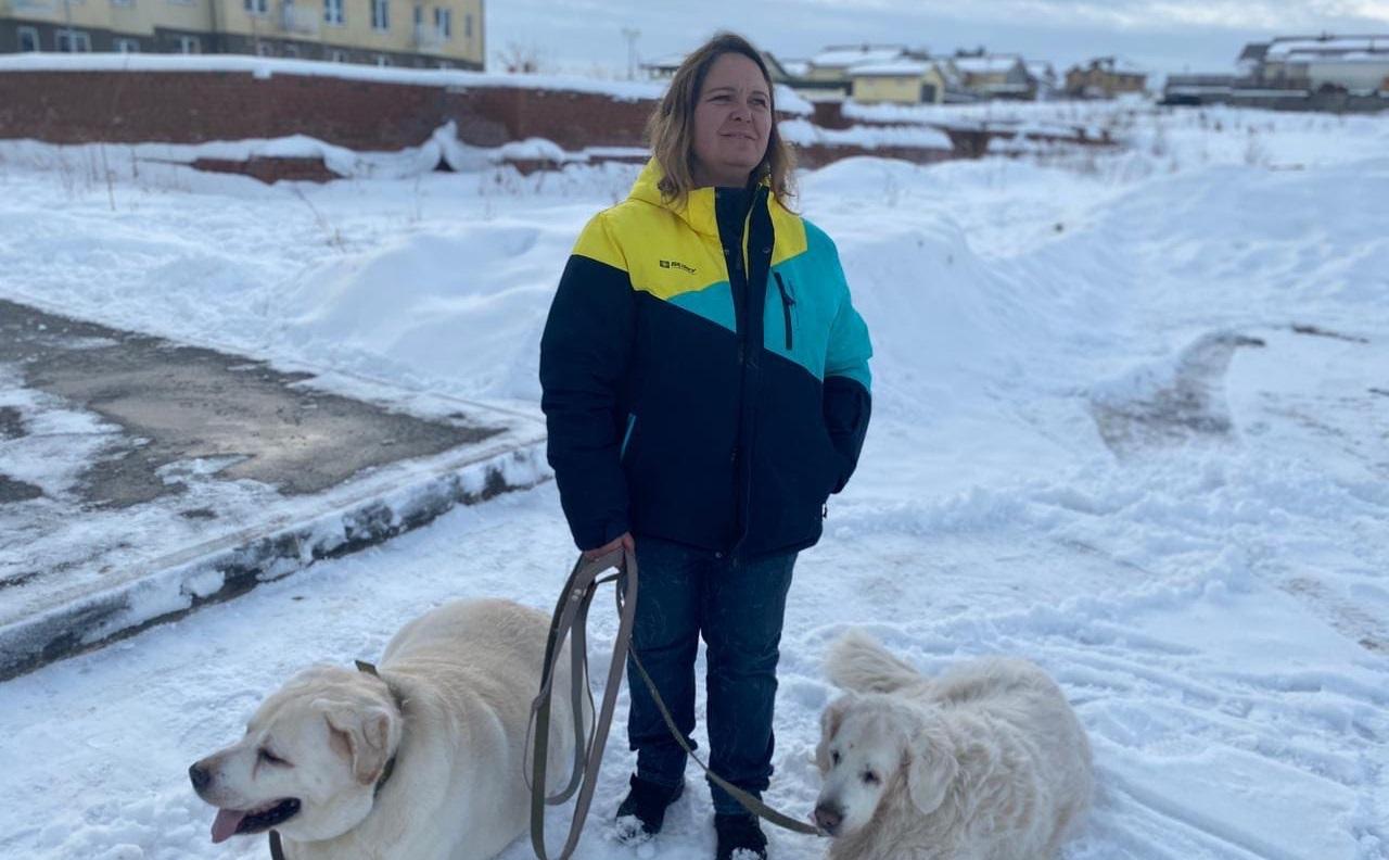 Нужно похудеть на 30 кг: что ждет самую толстую собаку на Южном Урале