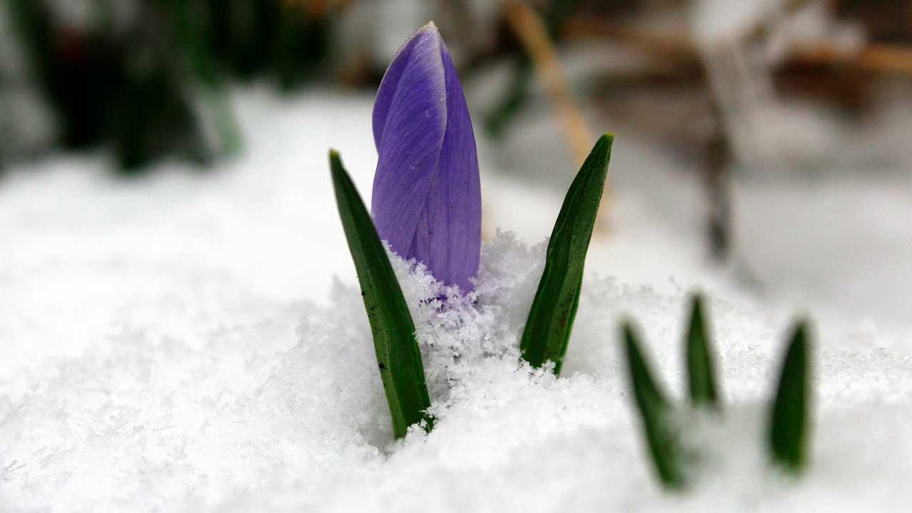 Приметы на 6 февраля: что нельзя делать и какой будет весна