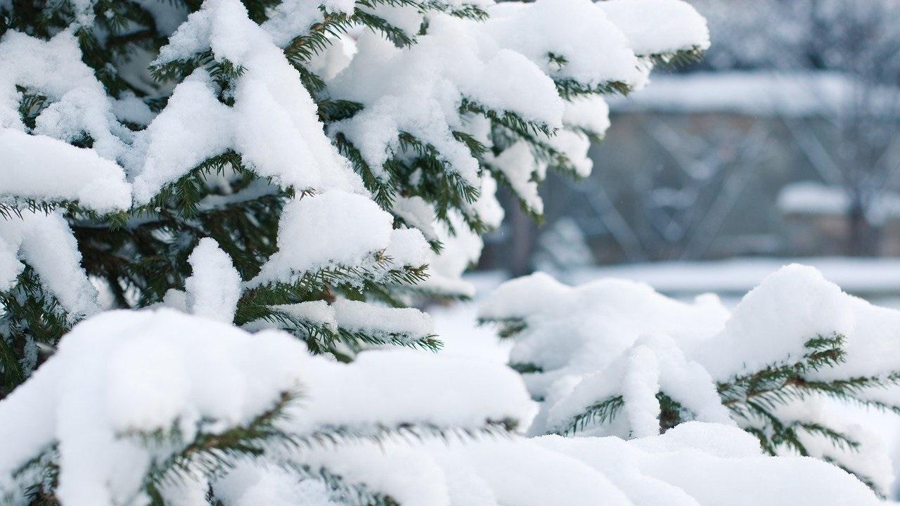 Погода в Челябинской области: синоптики прогнозируют мороз и штормовой ветер