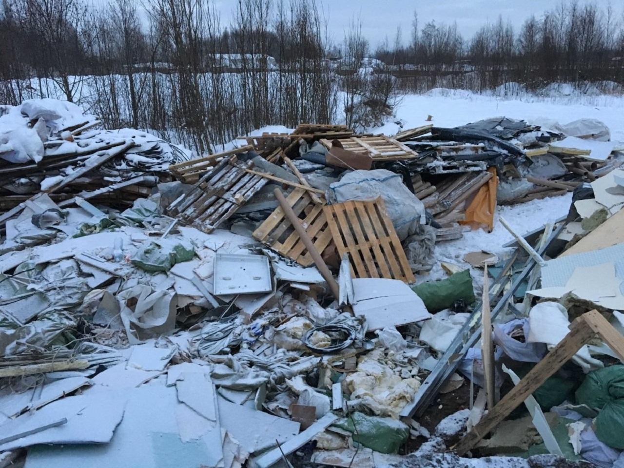 Отрезанную голову нашли на свалке в Челябинской области