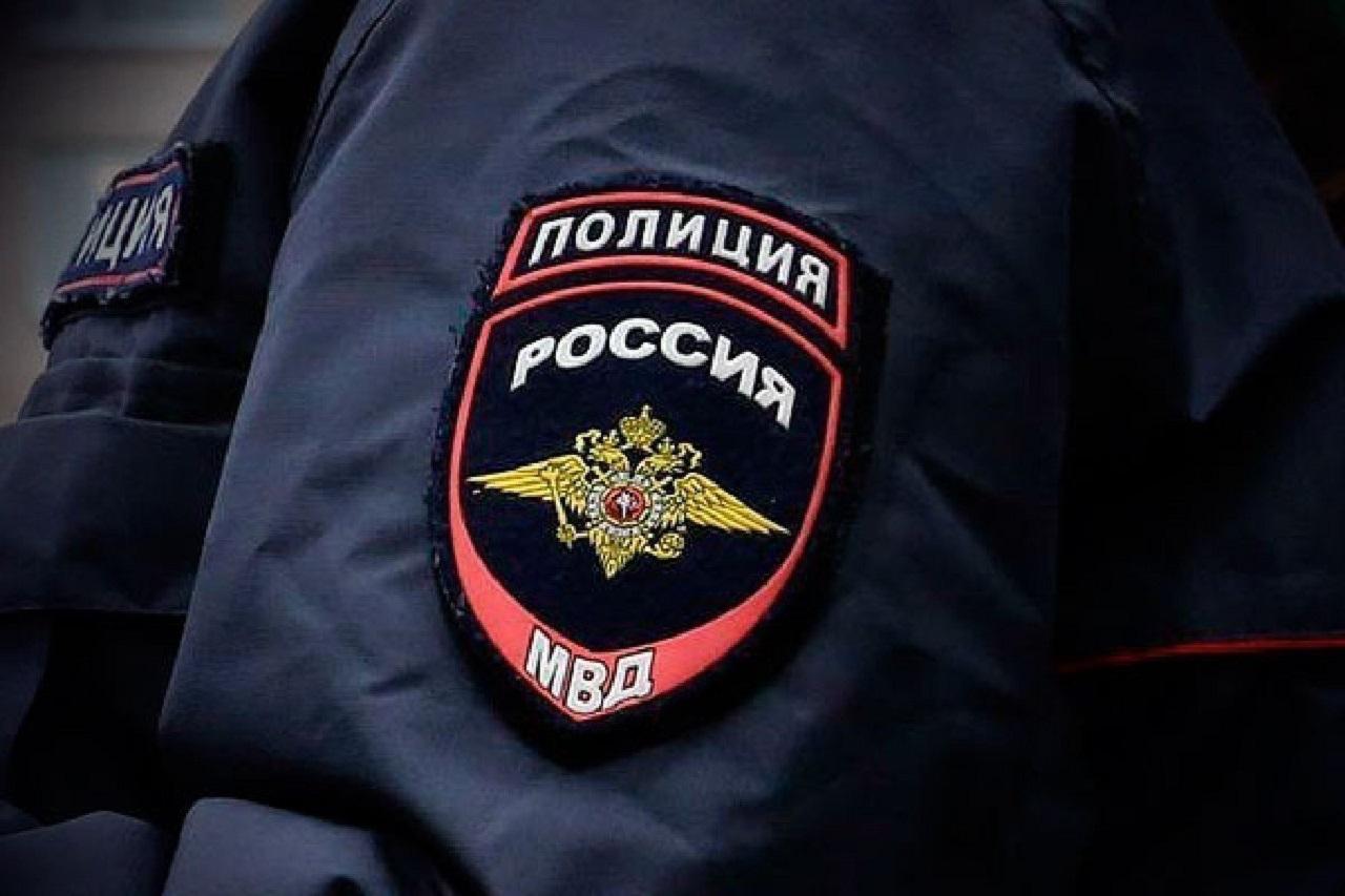 Дикий случай: мужчина в Челябинской области выбросил щенка из окна