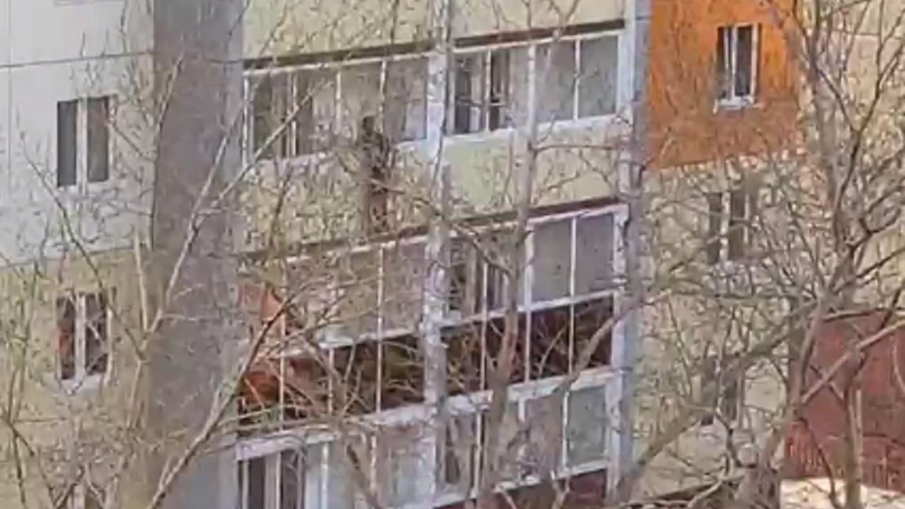 На краю пропасти: вышедший на карниз многоэтажки челябинец напугал горожан ВИДЕО