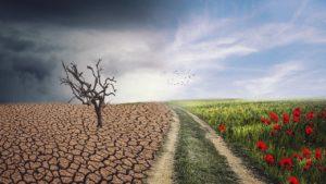 Экстремальная погода - синоптики рассказали об изменениях климата в России. По данным специалистов, 2020 год был необычайно теплым и побил многие рекорды.