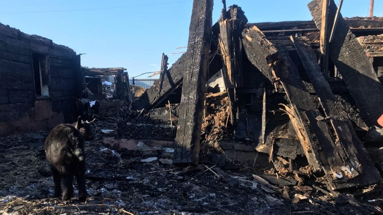 На Урале мать-одиночка с 2 детьми лишилась дома из-за пожара