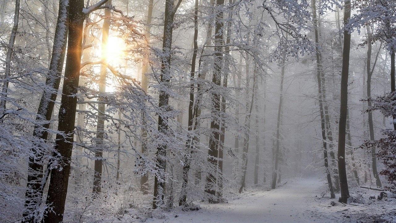Погода в Челябинской области: синоптики рассказали, когда придет тепло