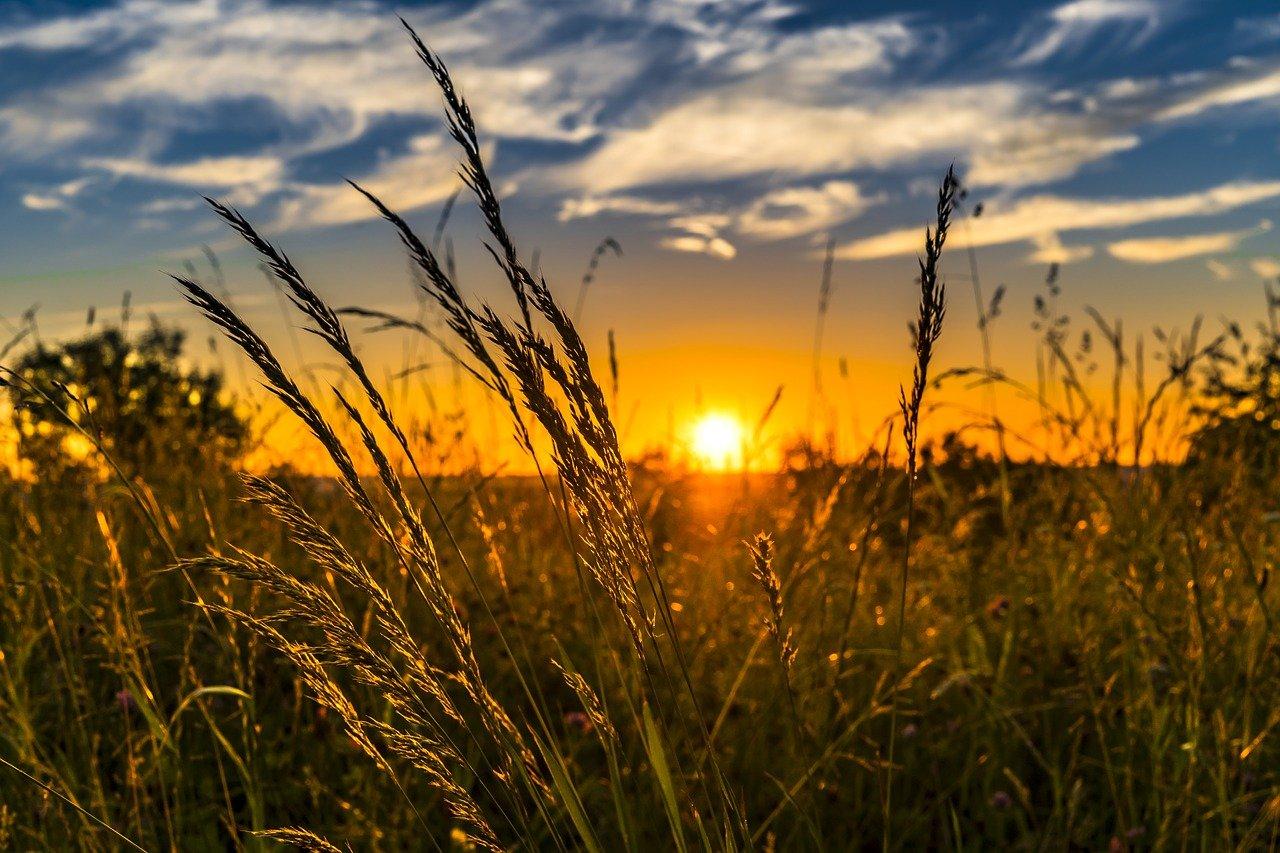 Погода в Челябинске: синоптики предсказали «персиковое лето»