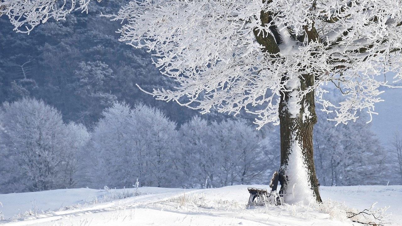 Погода в Челябинской области: снег и ветер прогнозируют синоптики