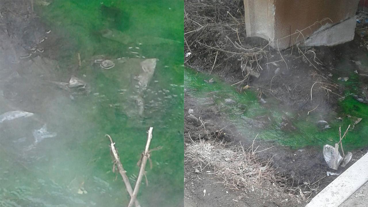 «Новый термальный курорт»: зеленая река удивила жителей Челябинска ВИДЕО