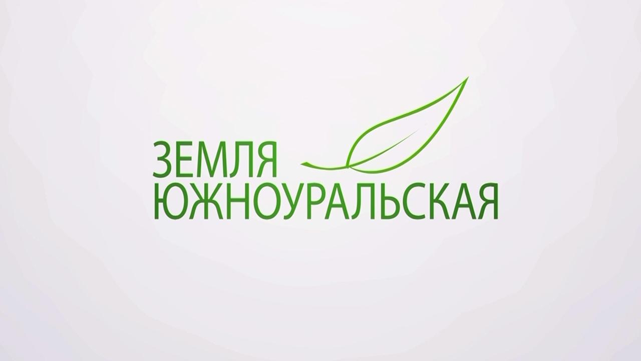Осень 2021: какой урожай собирают в Челябинской области