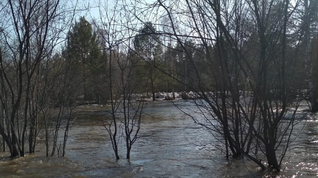 Воды по колено: в Челябинской области по дороге потекла река с глыбами льда ВИДЕО