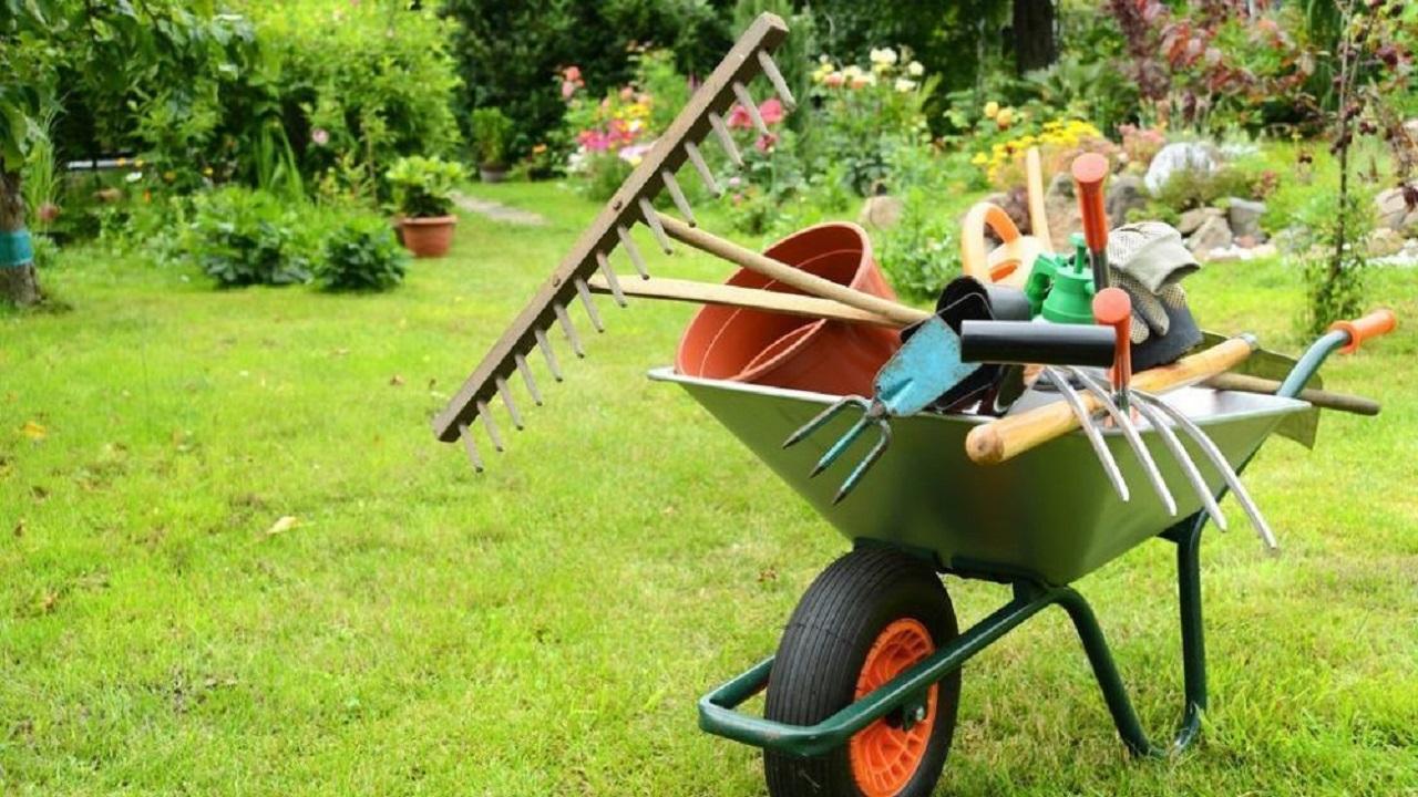 В помощь садоводам: какие инструменты пригодятся в сезоне 2021