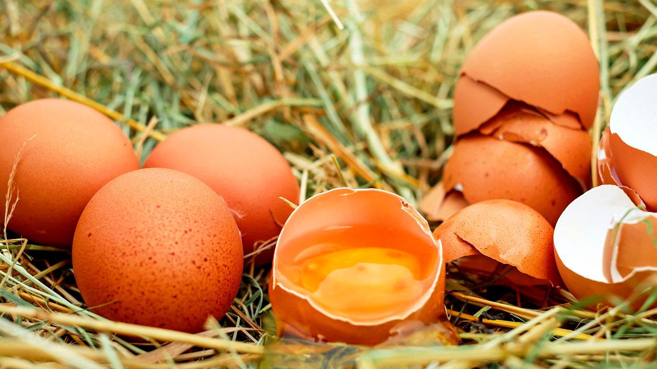 Правильные яйца: как выбрать продукты на Пасху 2021