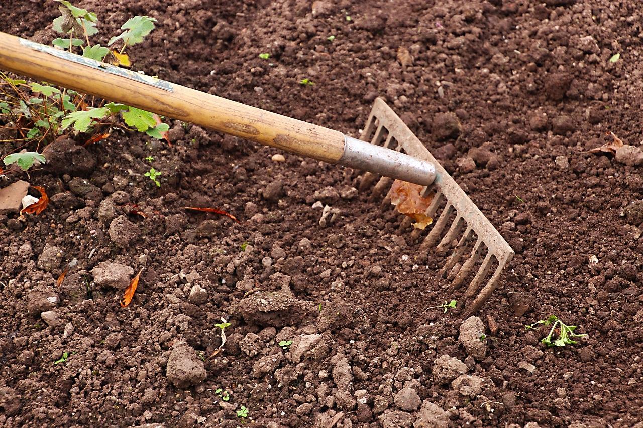Календарь садовода 2021: эти 10 вещей важно сделать в апреле