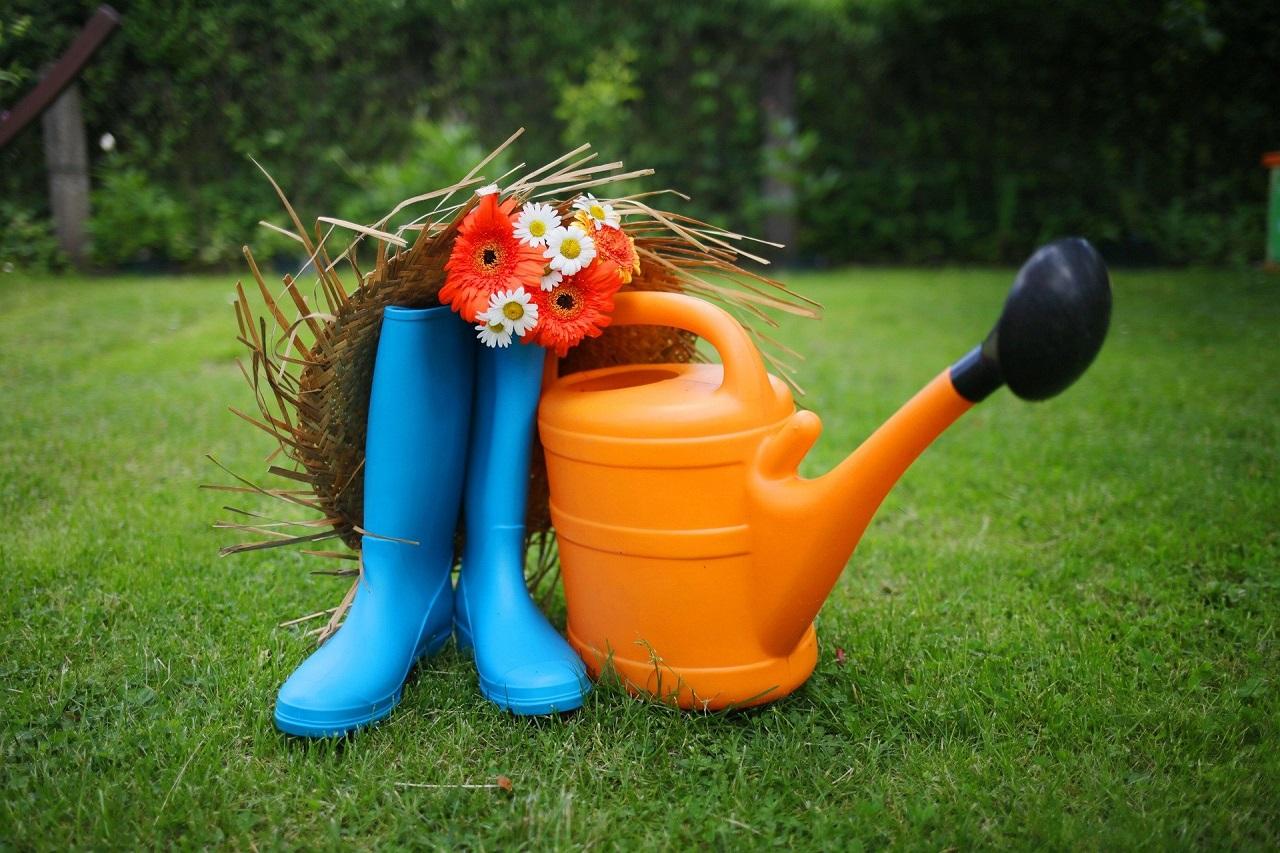Дачный сезон: где купить инструменты для сада и огорода