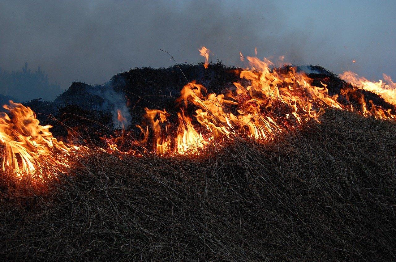 Подошел вплотную: огонь окружил оборонное предприятие на Южном Урале ВИДЕО