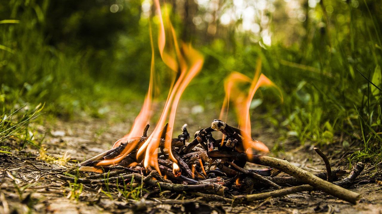 Ищут дронами: за сжигание травы в садах южноуральцам грозят штрафы