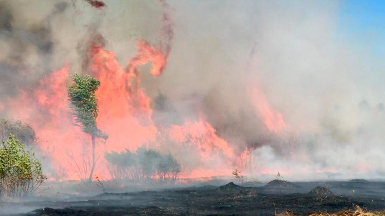 Особый противопожарный режим в Челябинской области: что нельзя делать