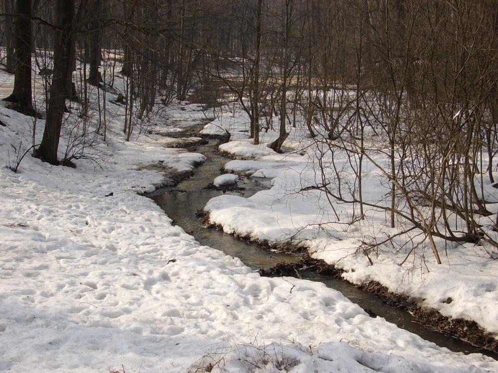 «Речка быстрая, вода нечистая». В Челябинской области сочинили песню про ручей нечистот
