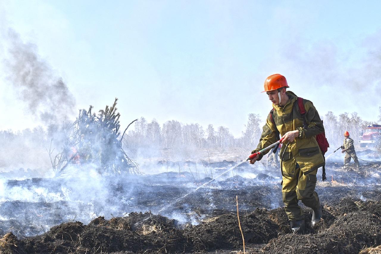 Редкие кадры: зачем пожарные лес в Челябинской области подожгли