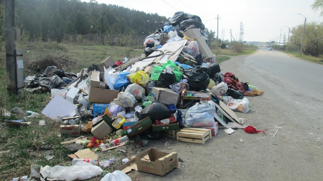 Мусорный коллапс: огромные горы отходов возмутили жителей Южного Урала