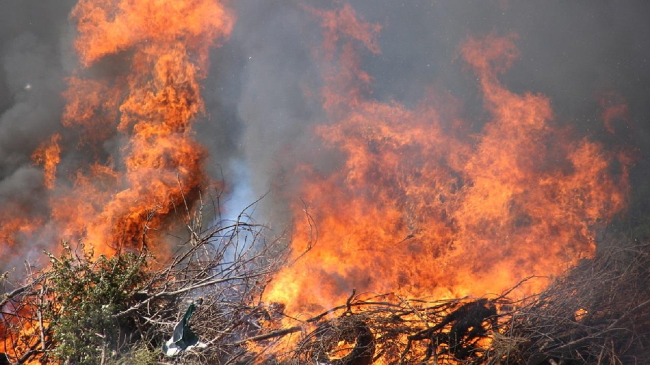 Пожар вспыхнул на кладбище возле АЗС в Челябинской области
