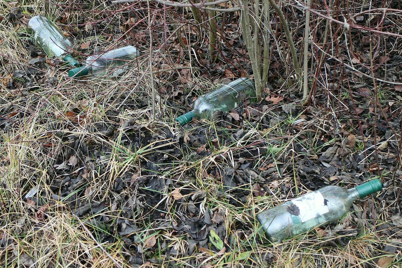 В России могут появиться новые штрафы за мусор