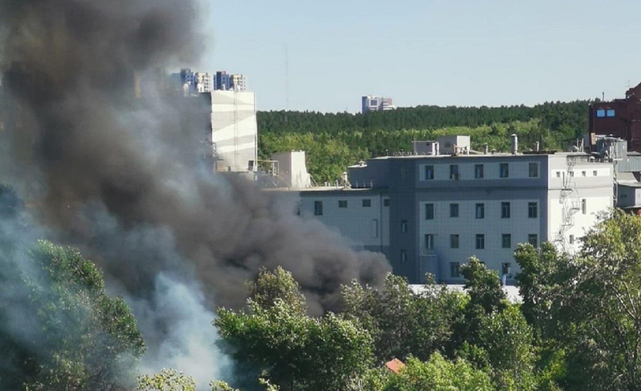 Из-за пожаров Челябинск заволокло черным дымом ВИДЕО