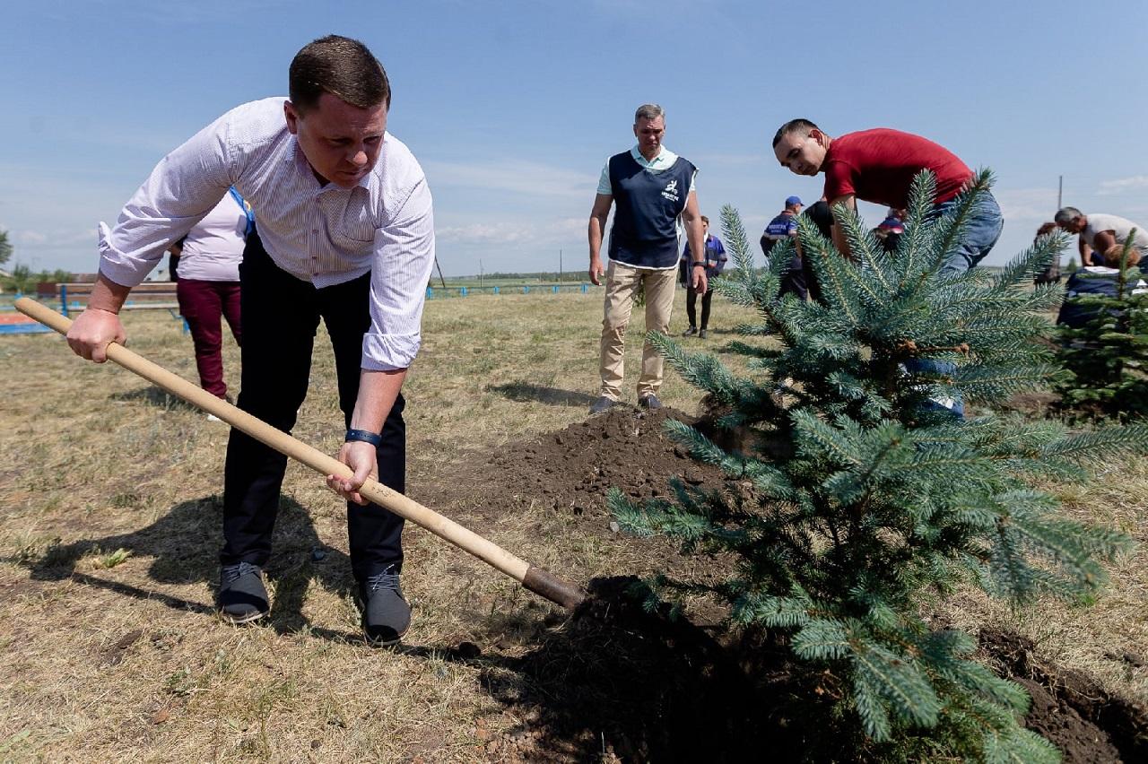 Новые аллеи: в Челябинской области высадили «Сад памяти»