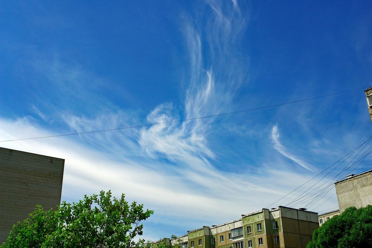 Крылатую лошадь заметили в небе над Челябинской областью