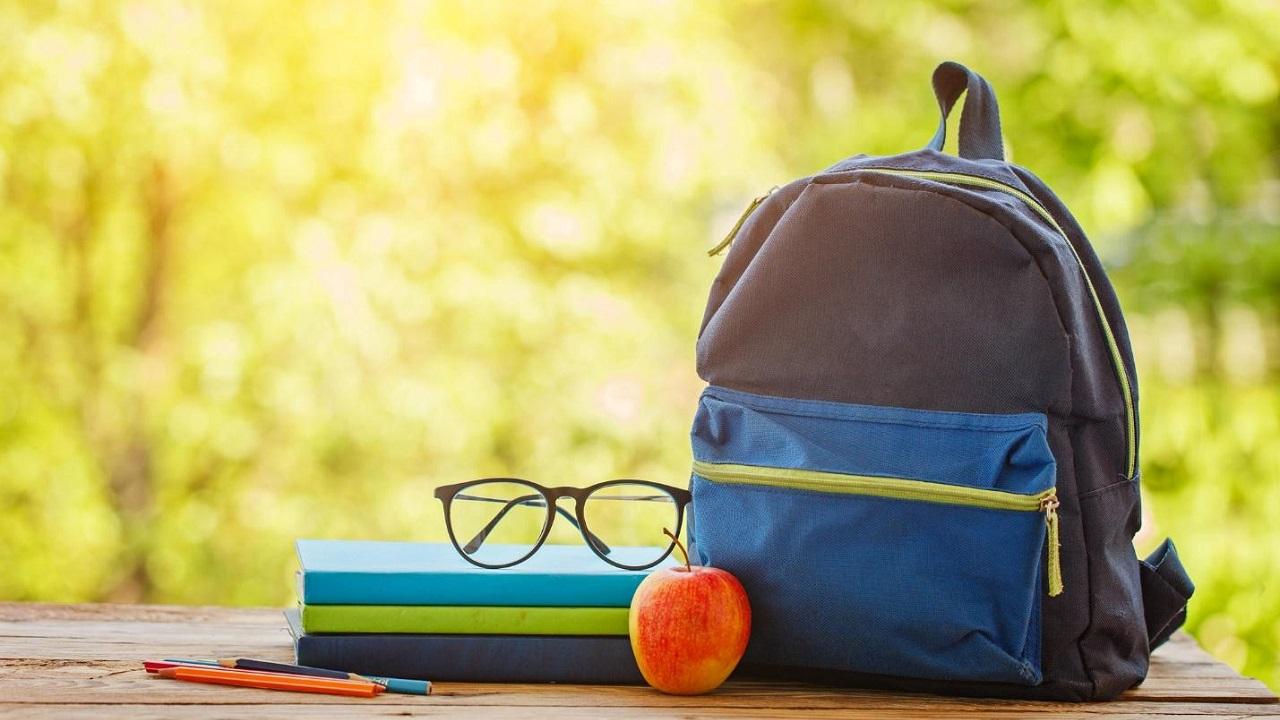 Рюкзак для ребенка: виды и критерии выбора
