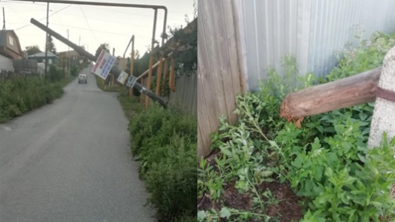 В Челябинске дерево рухнуло на припаркованную машину