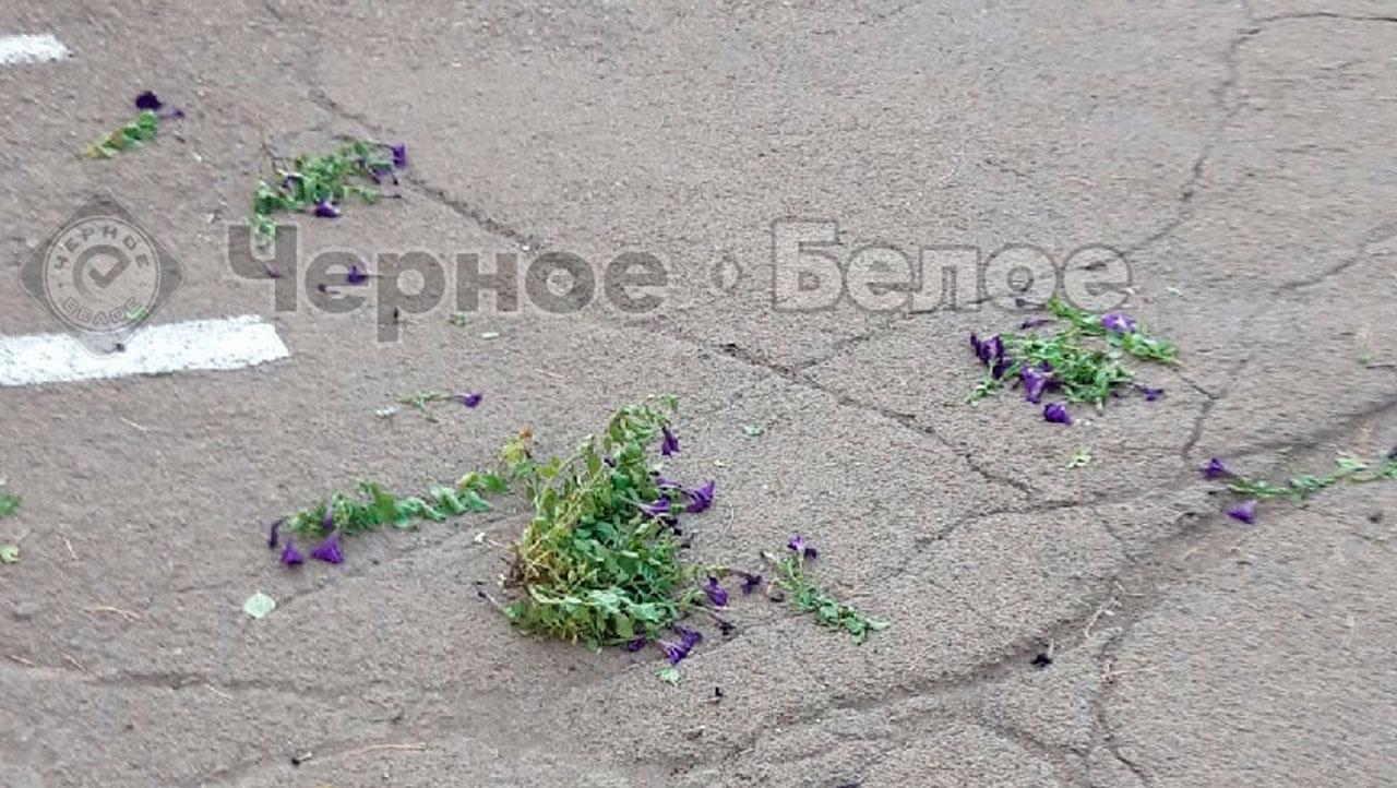 Измазали фекалиями: погром в детском саду в Челябинской области