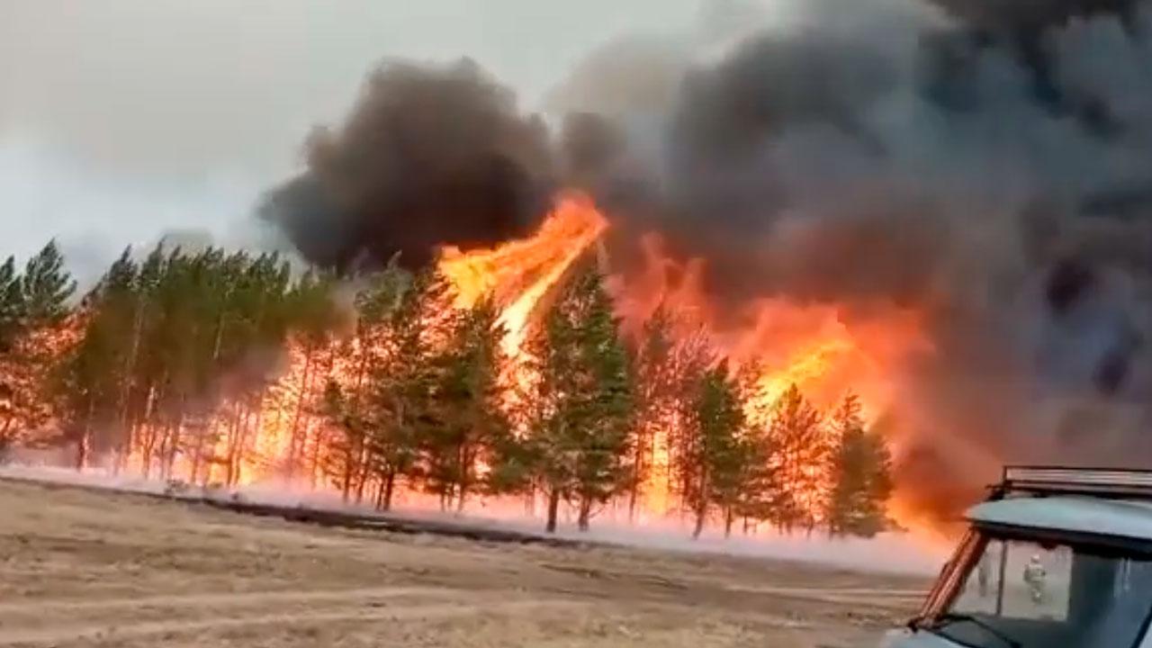 Уничтоженные огнем 46 домов на юге Челябинской области восстановят до холодов – Текслер