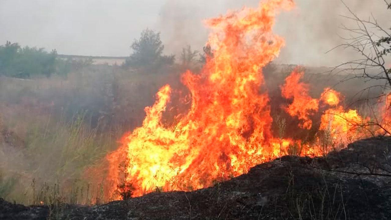 Сгорело14 тысяч га: лесные пожары уничтожили 71 строение на юге Челябинской области