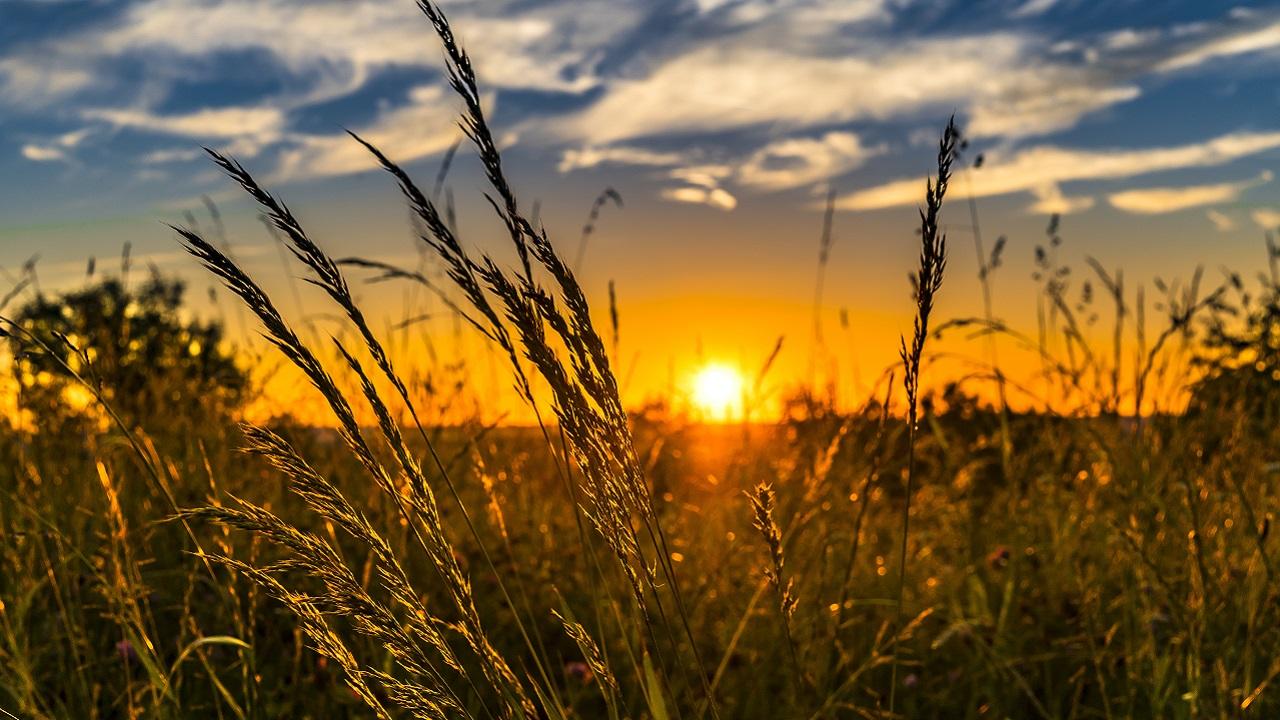 Становится все жарче: погода в Челябинской области продолжает удивлять