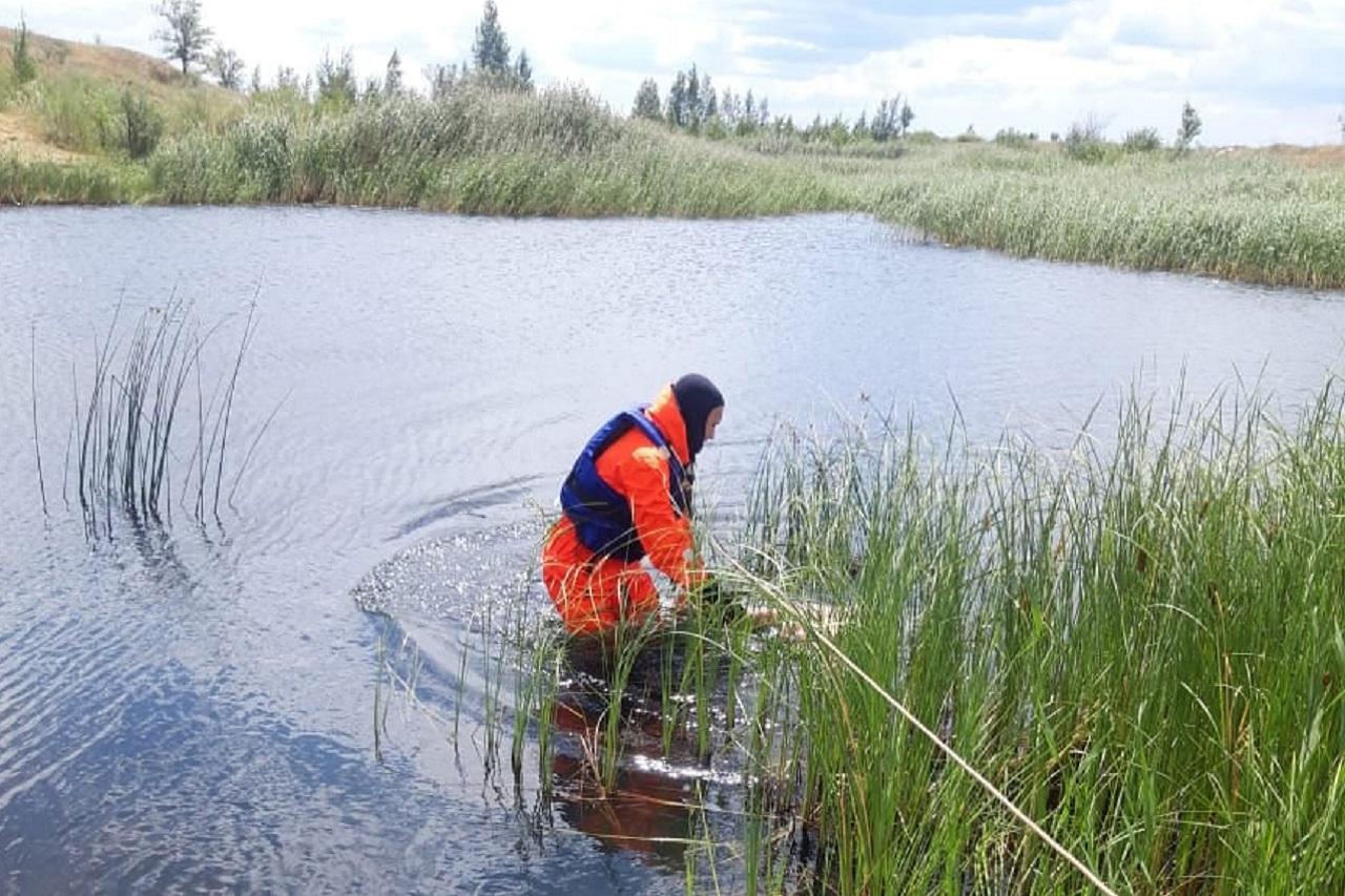 Унесло на глубину: рыбак утонул в Челябинской области