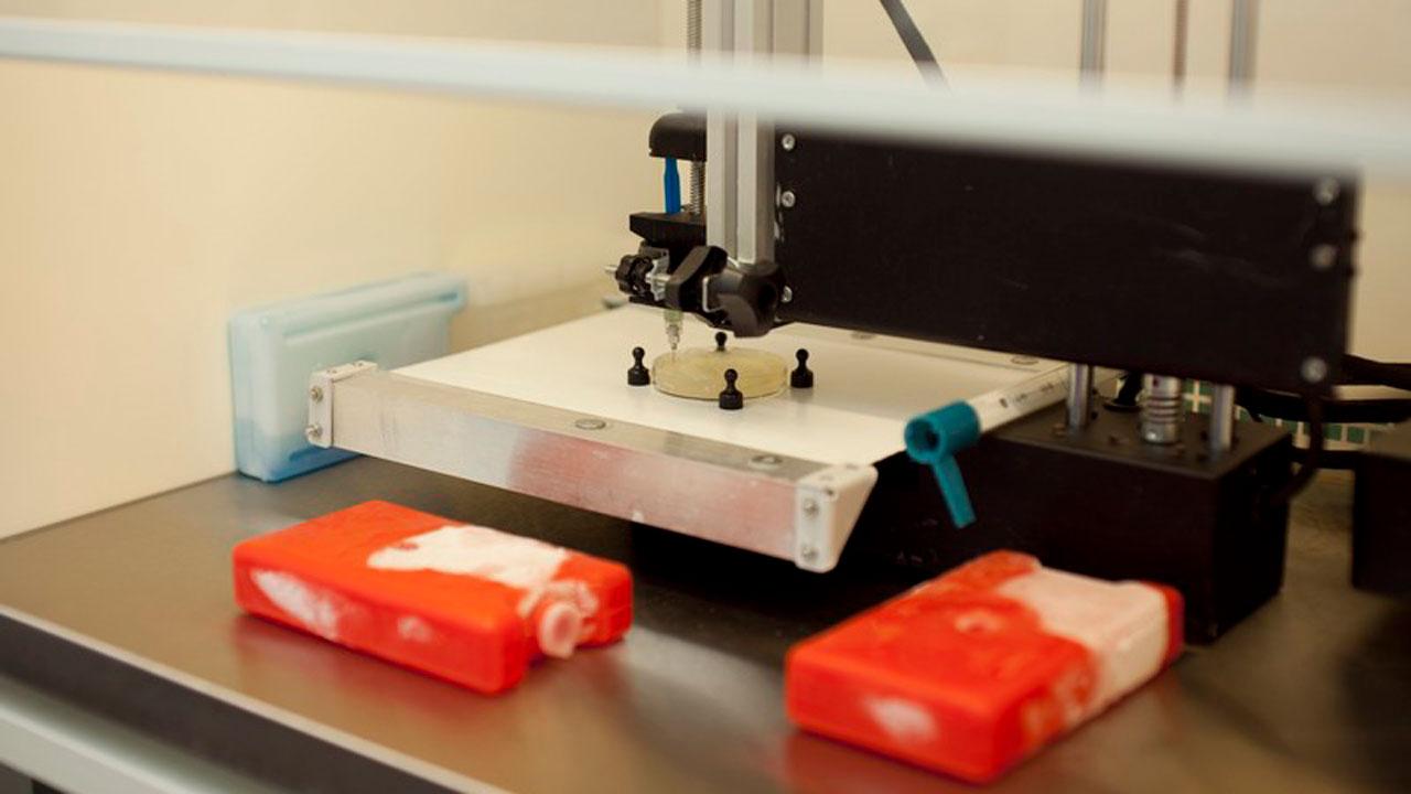 Выращивают уши: в Челябинске научились печатать органы на 3D-принтере