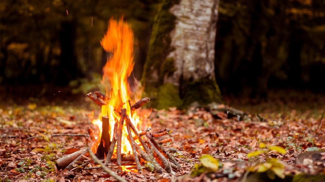 Пожарная опасность: ограничения для туристов ввели в нацпарке «Таганай»