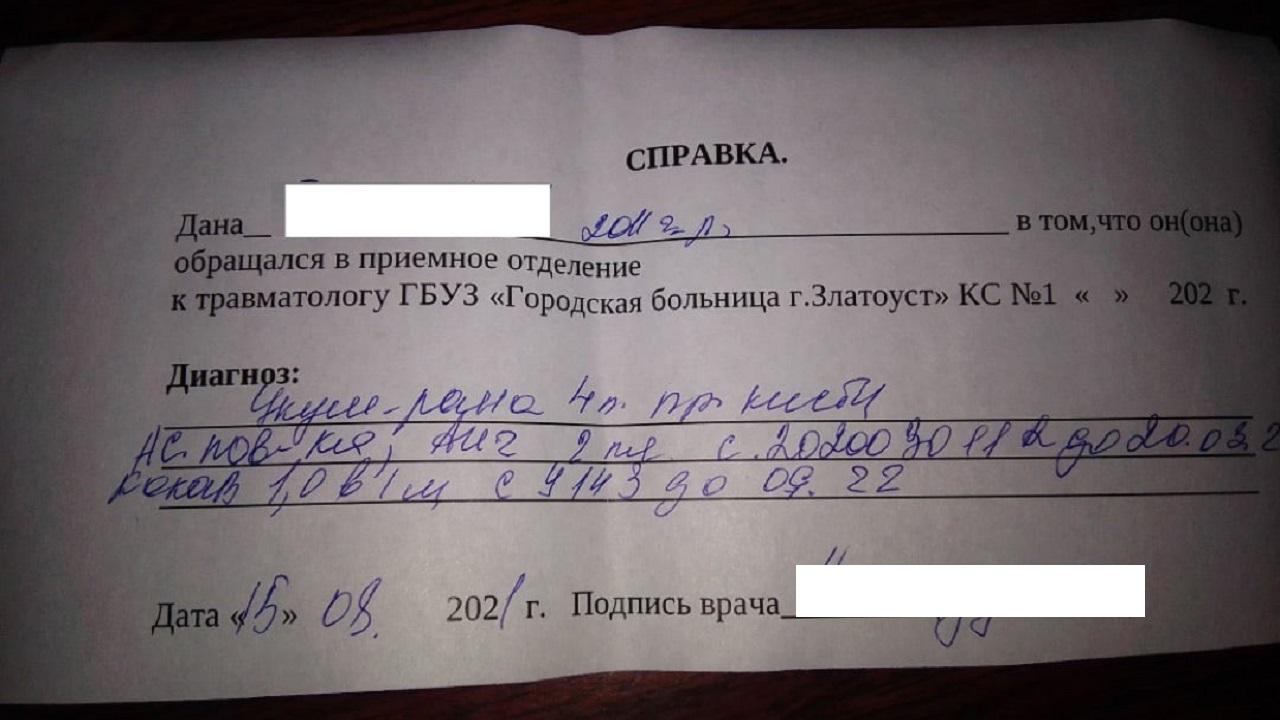 Крыса покусала ребёнка на детской площадке в Челябинской области