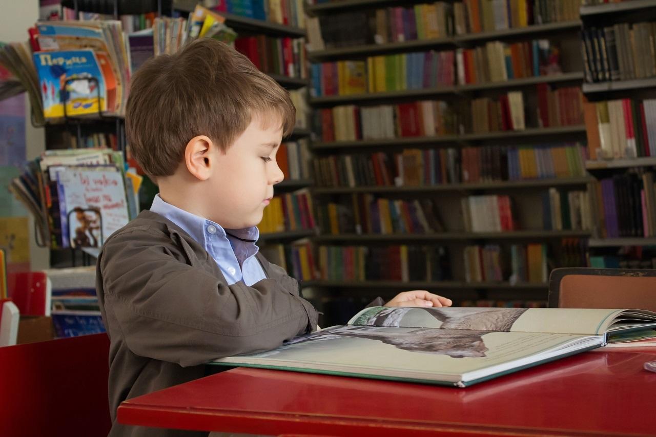 Какие выплаты на подготовку к школе получат семьи в Челябинской области и куда обращаться