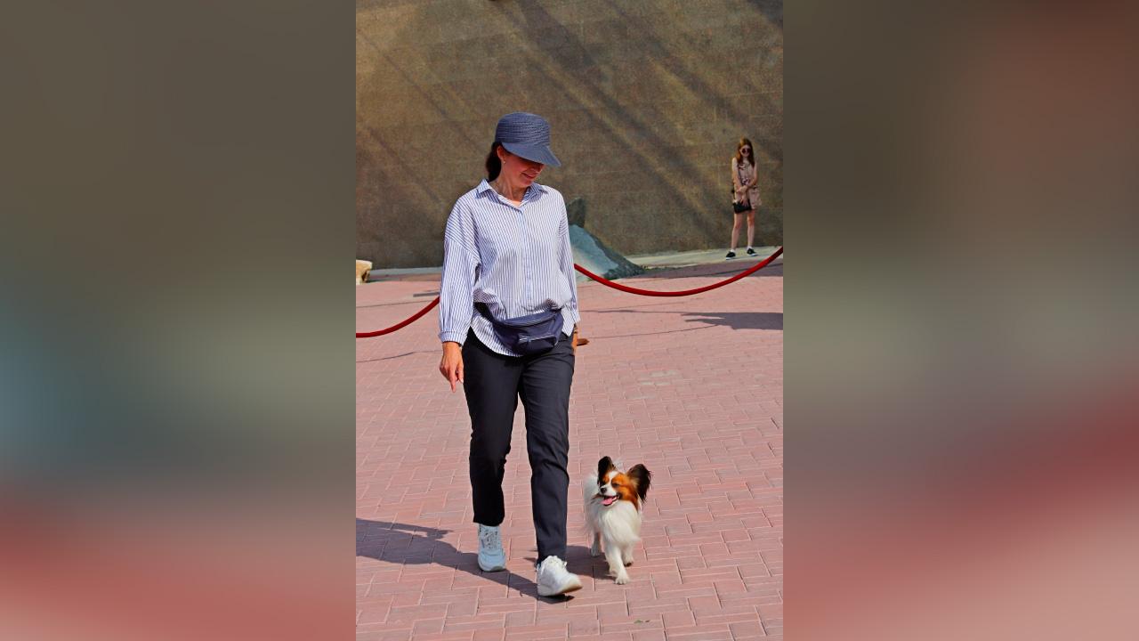 Кинологи в Челябинске показали, на что способны служебные собаки