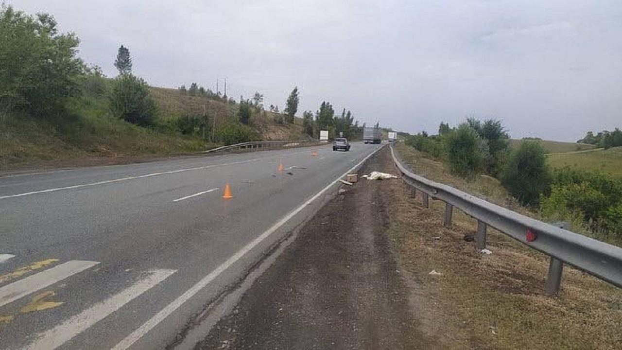 Жителя Челябинской области насмерть сбили на трассе