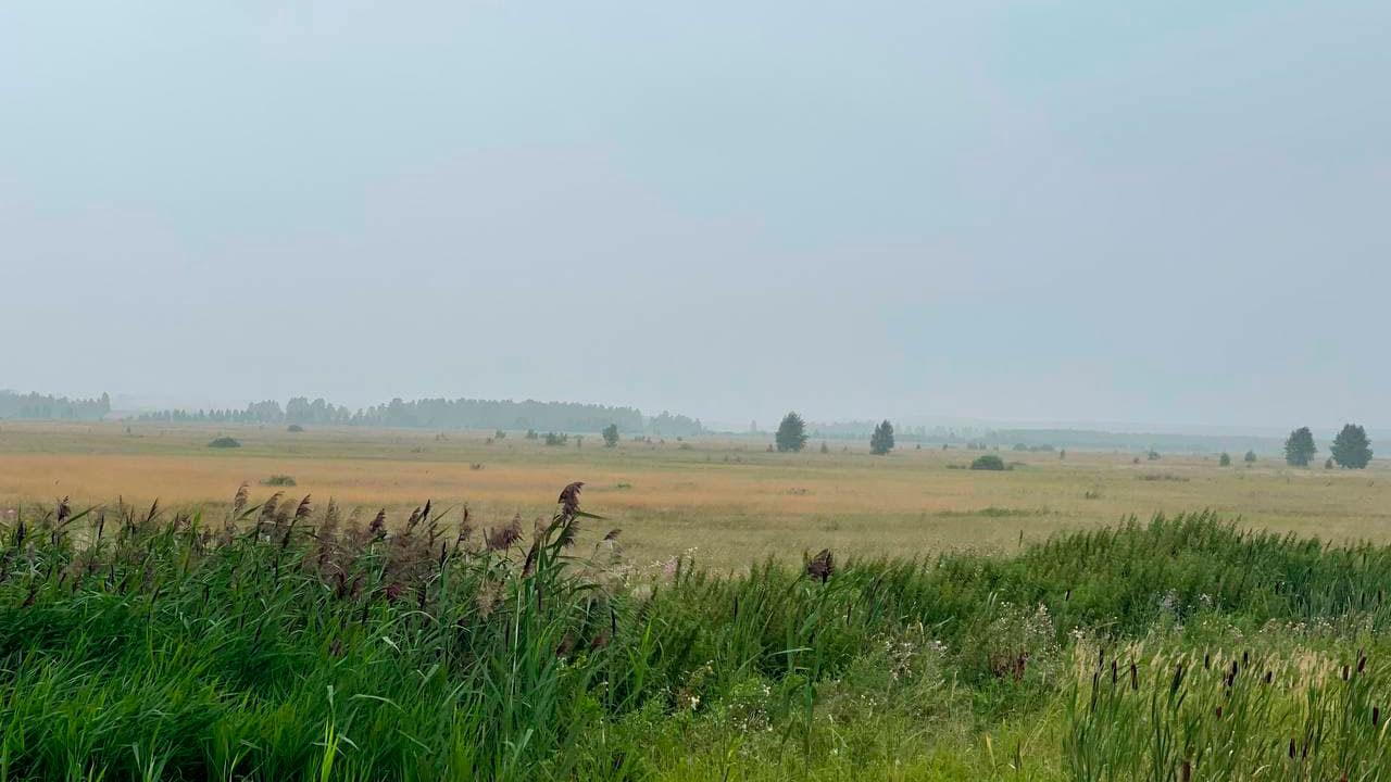 Застой воздуха: на Челябинскую область вновь идет дым от лесных пожаров в Якутии