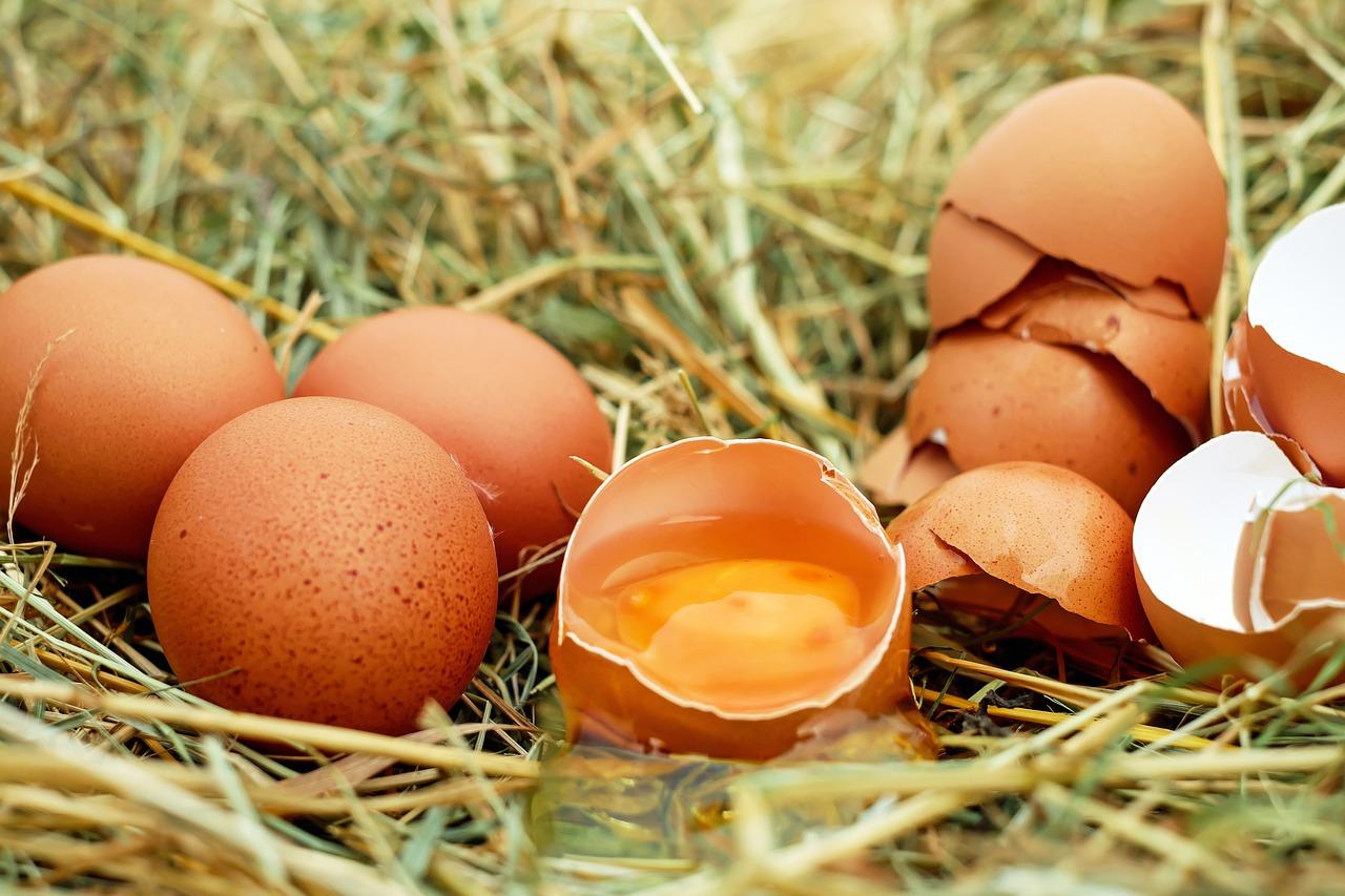 Польза и вред: что будет, если есть яйца каждый день