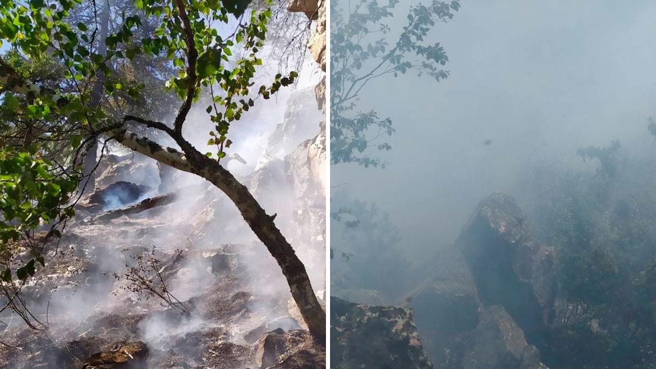 На границе с нацпарком в Челябинской области горит лес ВИДЕО