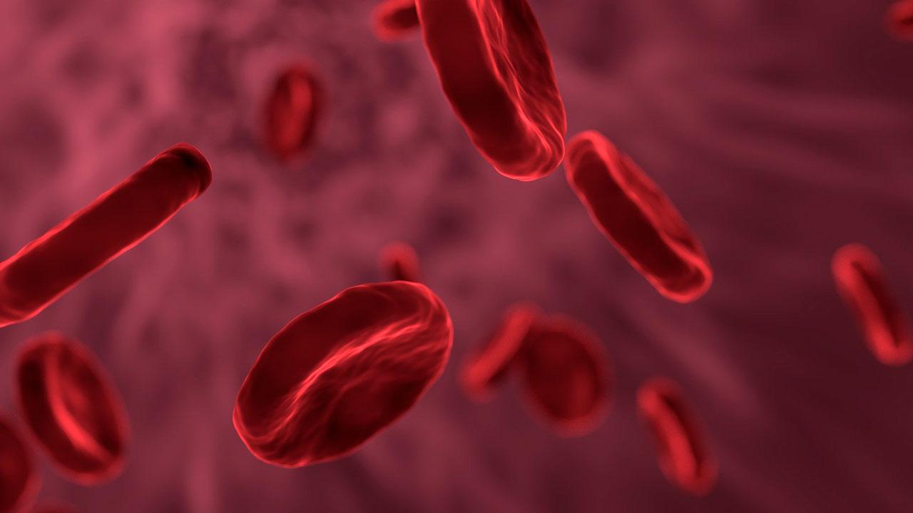 Характер по группе крови: кто лидер, а кому плохо без приключений